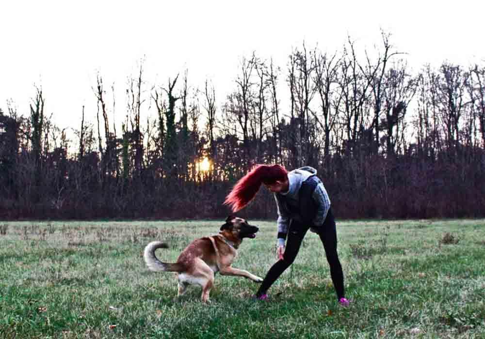 cane gioco disciplina