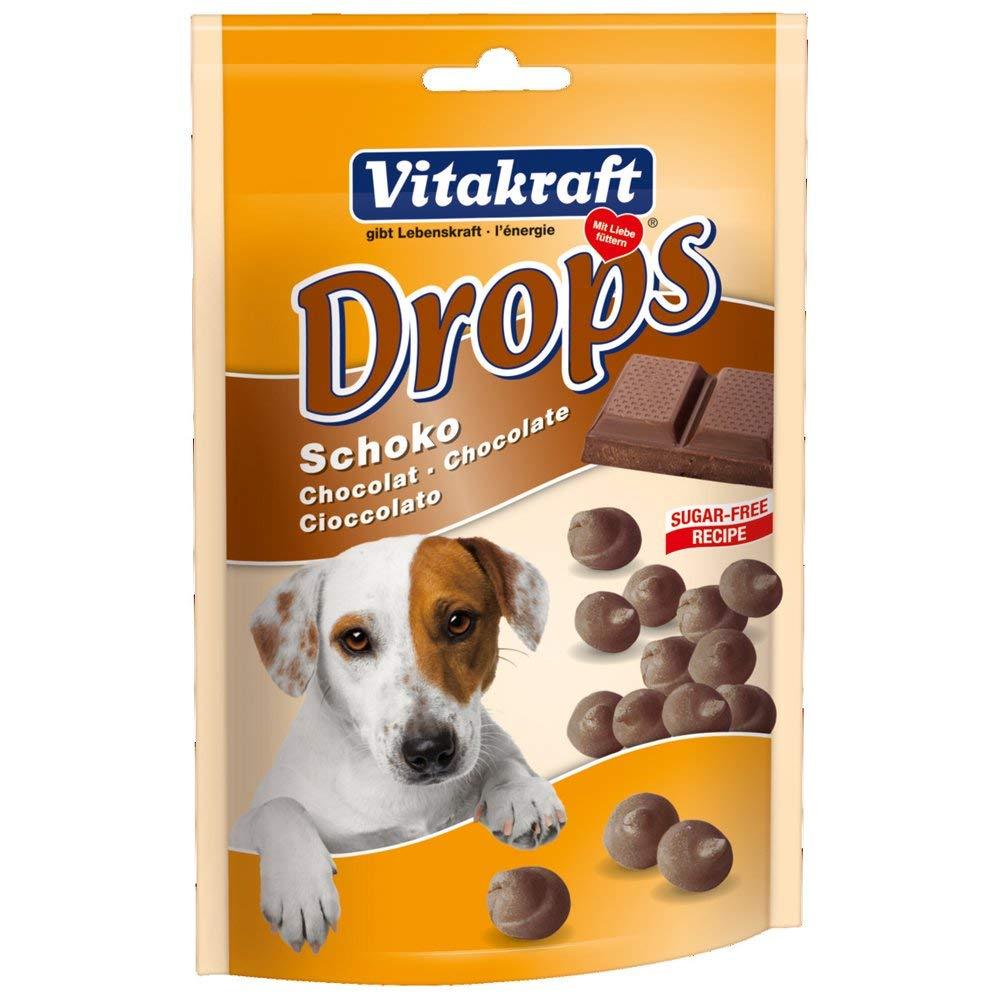 cani e cioccolato
