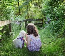 I cani ipoallergenici esistono? Lo studio svedese