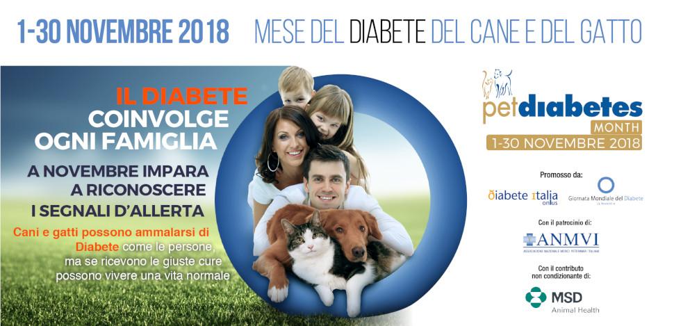 Diabete nel cane e nel gatto, il mese della prevenzinoe