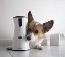 Recensione Furbo Dog Camera, la videocamera per cani