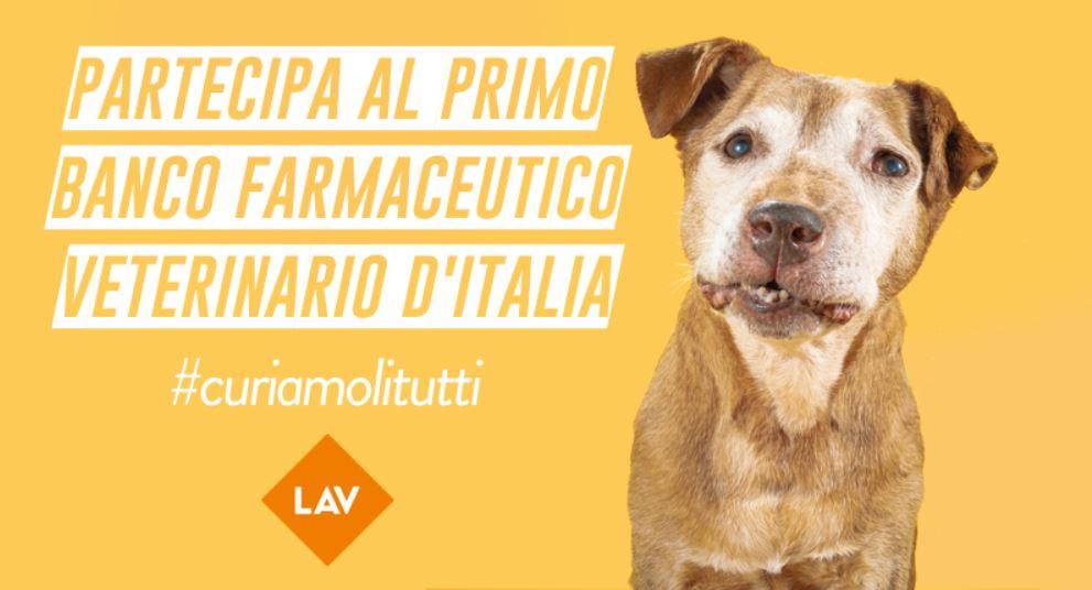farmaci veterinari inutilizzati