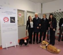 4 ZAMPE CON TE: l'iniziativa arriva all'Ospedale dei Castelli