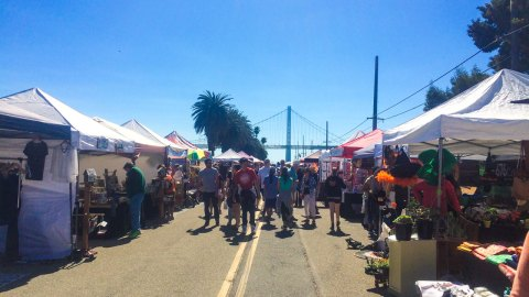 An Unexpected Day at the Treasure Island Flea