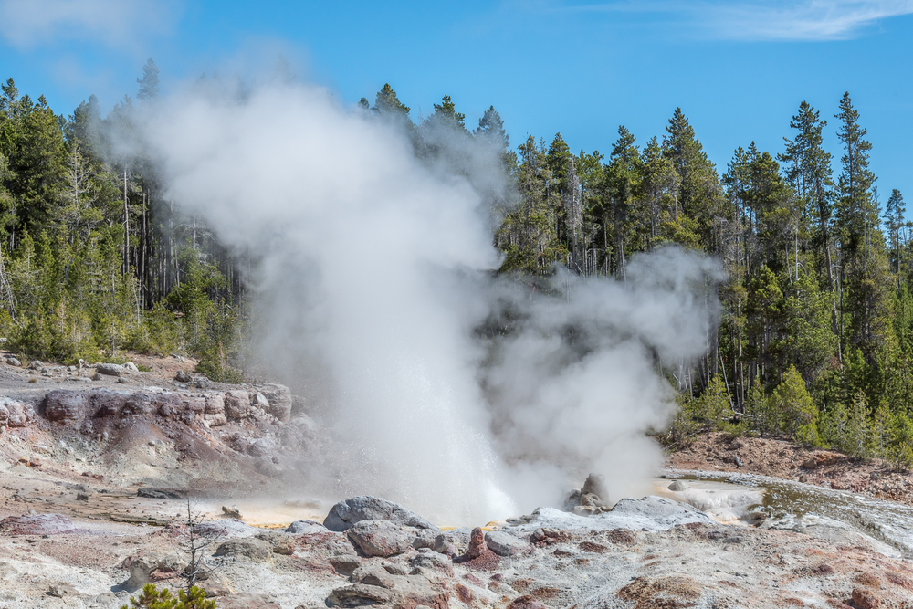 A steaming geyser in Yellowstone National Park.