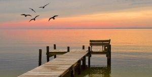 Chesapeake Bay Dock