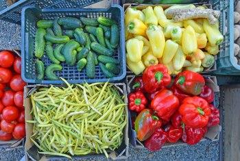 farm-market-1
