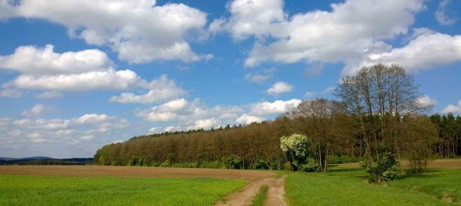 Osterspaziergang in Mittelfranken