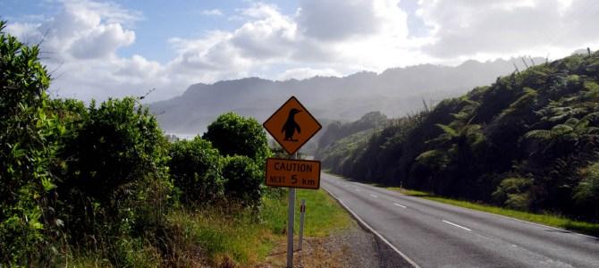 Neuseelands nördliche Südinsel: Von Cape Foulwind zum French Pass