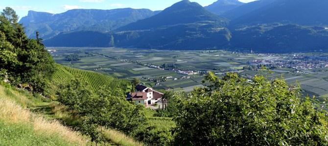 Wein und Obst so weit das Auge reicht – Genussmomente am Pflanzerhof in Südtirol
