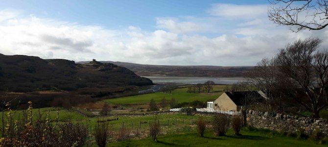 Birte bloggt: Die schottische Ostküste entlang nach Tongue