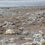 Das Ende des Plastikwahn in Indonesien