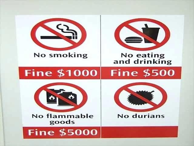 Australische Uni wegen Durian evakuiert / Foto: Wikipedia