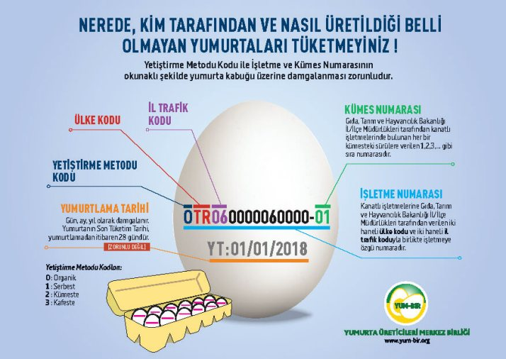yumurta-kodu-41-1.jpg
