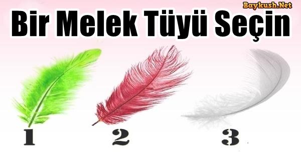 melek-tuy-kapak-1.jpg