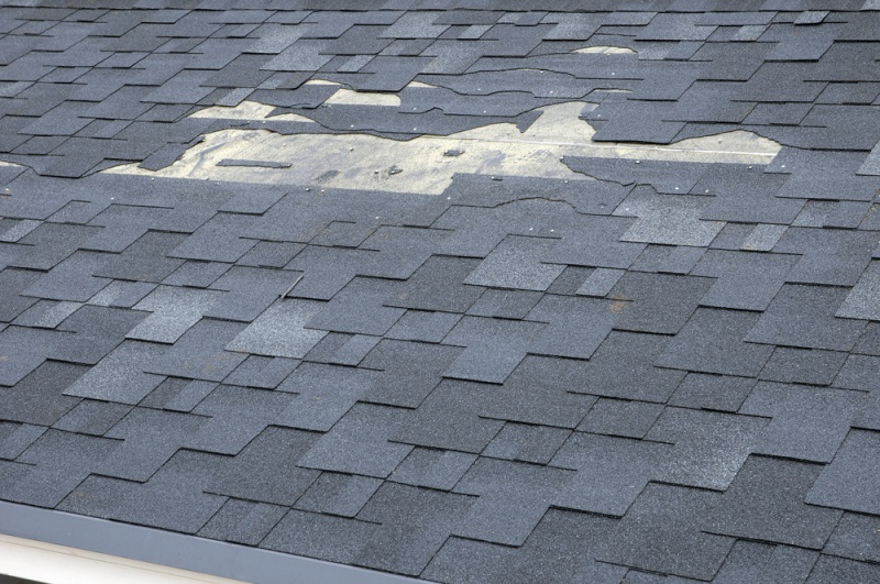 Roofing Maintenance Tips for Lasting Roofs