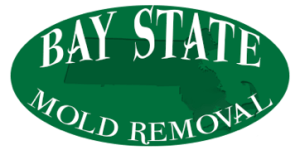 Bay State Mold Removal