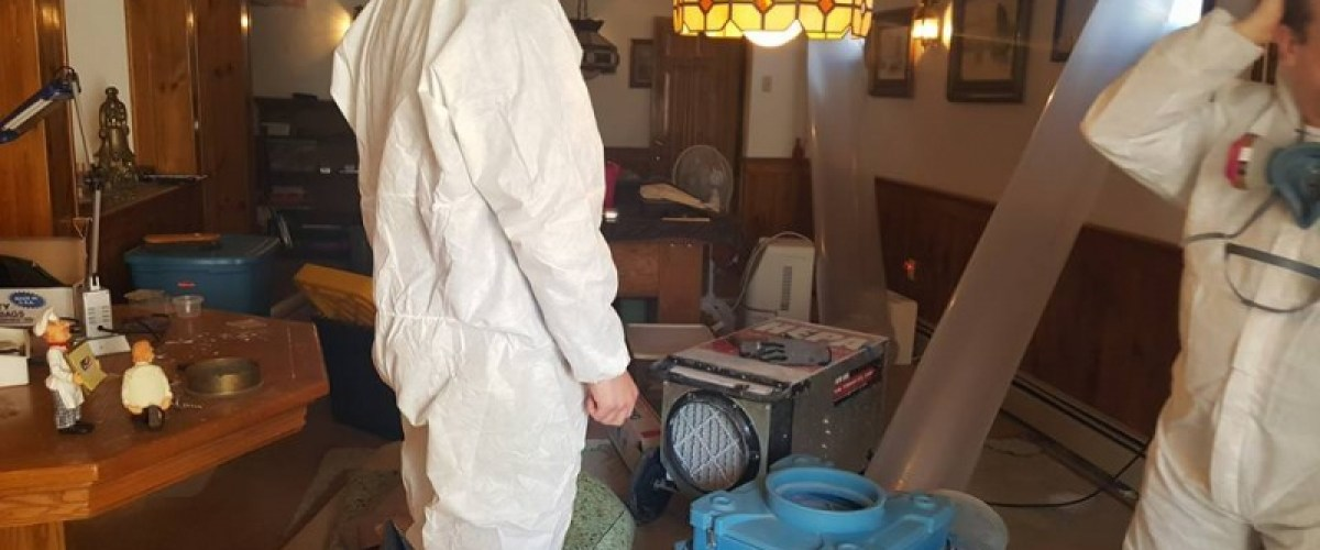 Mold removal crew removing basement mold