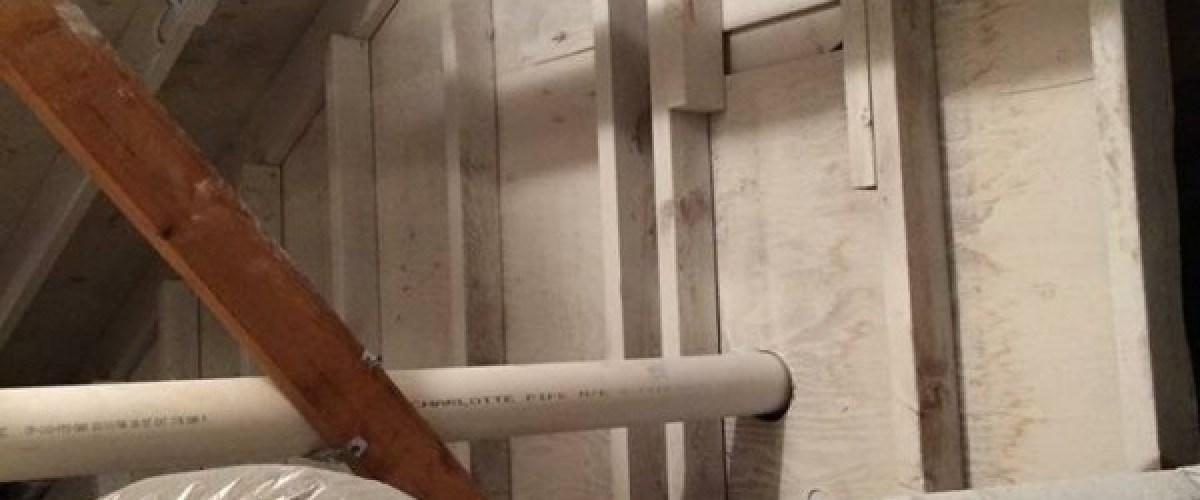 Home attic mold removal