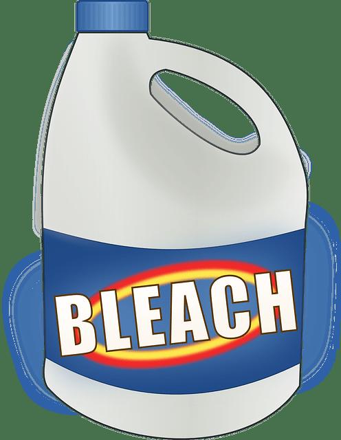 Can Bleach Kill Mold?
