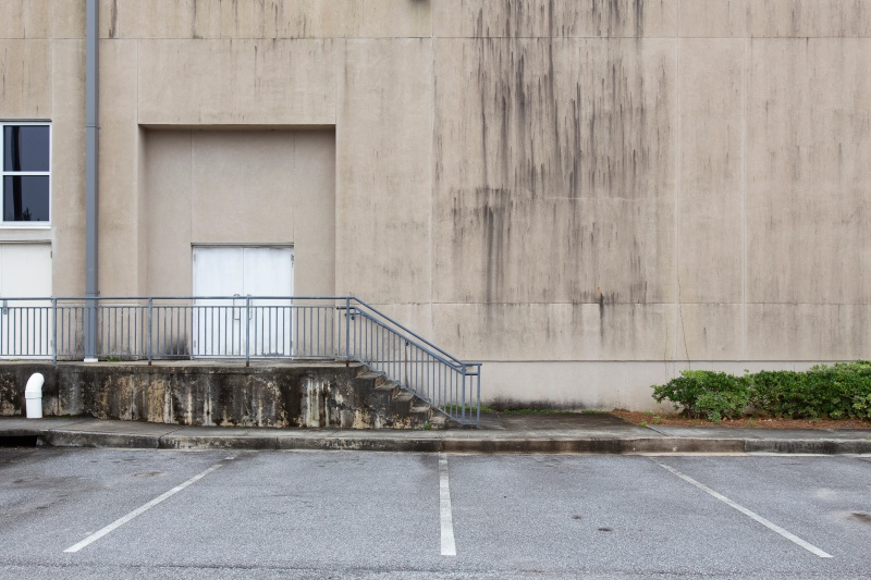 Mold Statistics You Should Know In Commercial Buildings