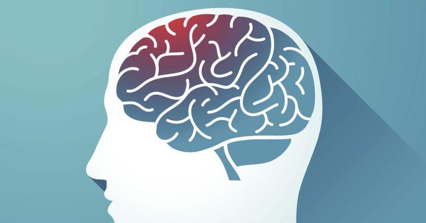 SHK 's Blog:  Living with Permanent Brain Damage