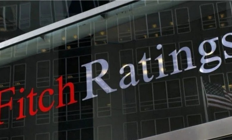 Turkish economy showed 'impressive resilience' against crisis: Fitch expert 1