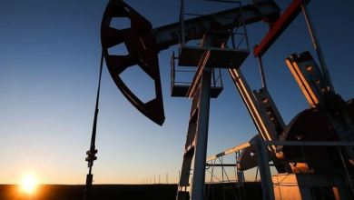 Oil steady as market awaits OPEC cut against low demand 29