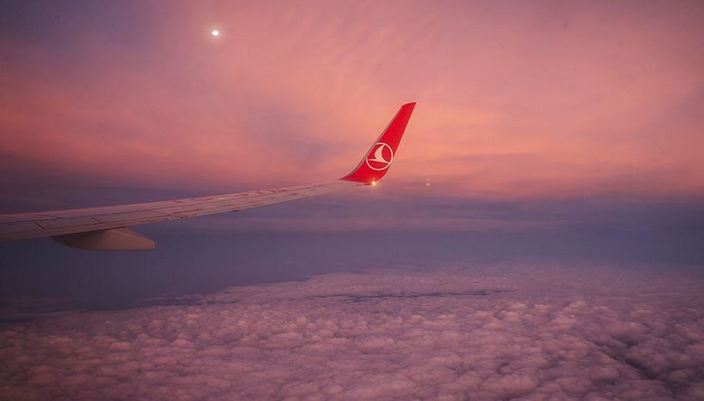 Turkish Airlines suspends nearly all int'l flights 1
