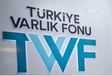 Turkey Wealth Fund consolidates public insurance firms 3