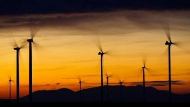 Photo of Global renewables use 1.5% higher than last year: IEA