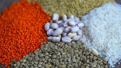 Turkish grains and legumes industry Exported worth 2,9 billion dollars of goods 9