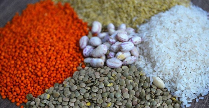 Turkish grains and legumes industry Exported worth 2,9 billion dollars of goods 1