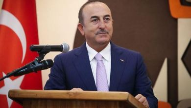 Turkey wants to play role in Niger's development 8