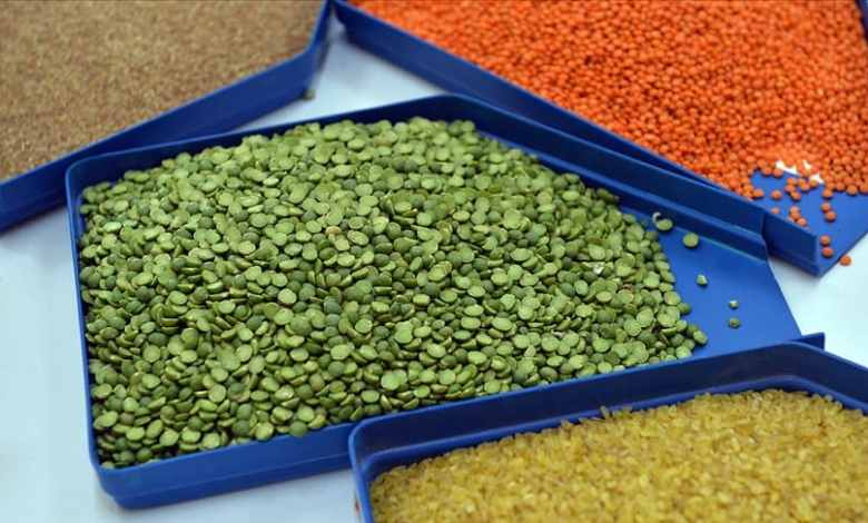 Cereals and pulses sector exports exceeded $7 billion for the first time in Turkey 1