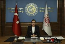 Turkey's specialized free zones to attract investments 11