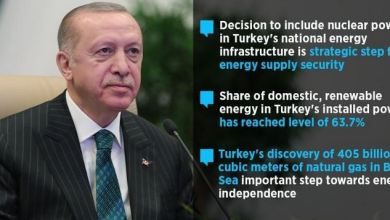 Turkey's nuclear power plant to produce 10% of electricity need 4