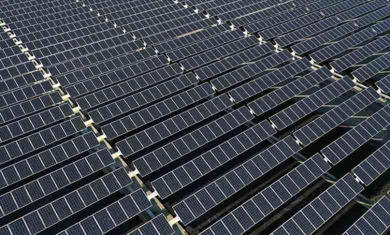 Turkey can easily reach 50 gigawatts of solar energy capacity: Expert 1