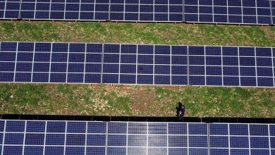 Turkey should follow EU's path towards green economy 25