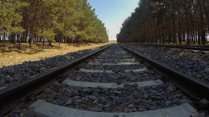 Businesses optimistic on Istanbul-Tehran-Islamabad freight line reopening 8