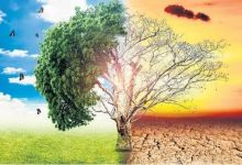 Ratified Paris climate accord to bring major changes in Turkey 11