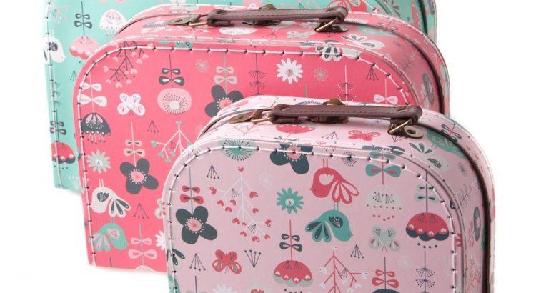 En savoir plus sur la valise de rangement