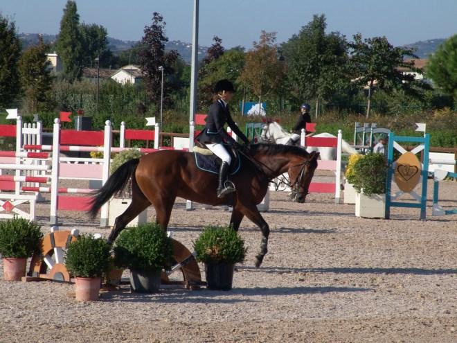 Riviera Horses San Giovanni Marignano