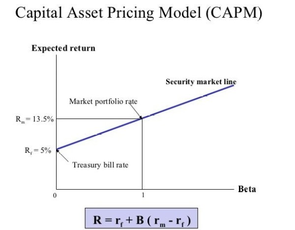 How CAPM relates with the risk and return