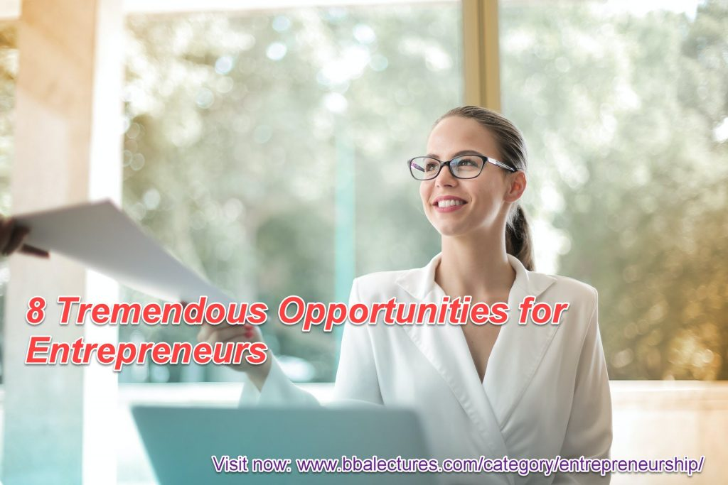 8 Tremendous Opportunities for Entrepreneurs