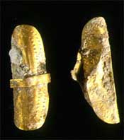 Golden artefacts - either earrings or hair tresses