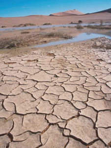 The effects of drought in Africa