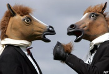 Image result for the horse's mouth