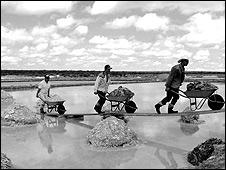 Trabajadores extraen sal en San Luis Potosí.