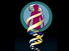 Gráfica de genómica